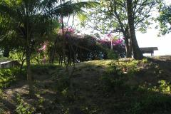 17-Farmyard-Cayo